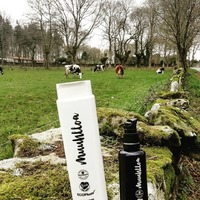 Un dos ingredientes das nosas cremas, é o leite ecolóxico das nosas vacas 🐮 que saen a pastar todos os días do ano.  Uno de los ingredientes de nuestras cremas, es la leche ecológica de nuestras vacas 🐮que salen a pastar todos los días del año.  #muuhlloa #milhulloa_coop #granxamaruxa #cosmeticakm0 #cosmeticagalega #cosméticaecológica #cosmeticacertificada #cosmeticarural