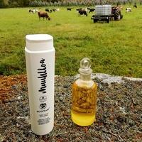 """Os ingredientes 🧪do noso leite corporal son ✔️ 40 % de leite ecolóxico ✔️ aceite e auga floral de Milenrama, a nosa plata fetiche, tamén chamada herba dos carpinteiros polas súas propiedades cicatrizantes. Unha crema ideal para 🤚mans, 🦶pés e💪🏼 cóbados.. Certificadas por @bioinspecta na súa máxima categoria, o selo ecoplus.  Los ingredientes 🧪de nuestra leche corporal son ✔️ 40 %, de leche ecológica ✔️ aceite y agua floral de Milenrama, nuestra planta fetiche, también llamada """" Hierba de los carpinteros"""" por sus propiedades cicatrizantes. Una crema ideal para 🤚manos, 🦶 pies y 💪🏼 codos. Cerificadas por @bioinspecta en su máxima categoría, el sello ecoplus. #muuhlloa #milhulloa_coop #granxamaruxa #cosmeticakm0 #galiciacalidade #cosmeticaecologica"""